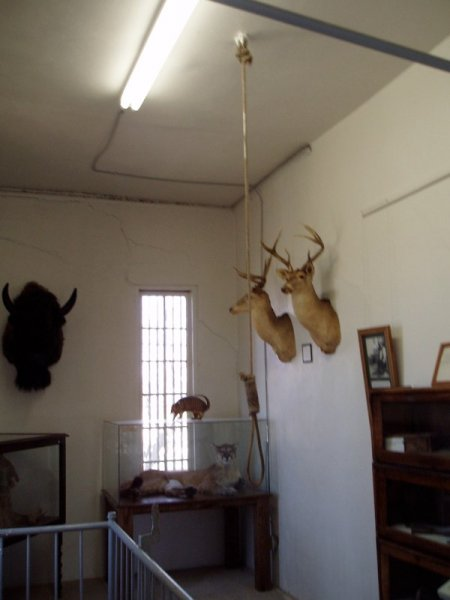 Old Jail in Palo Pinto 1